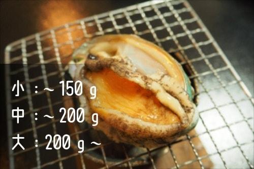 赤あわびの写真とサイズ別目安重量