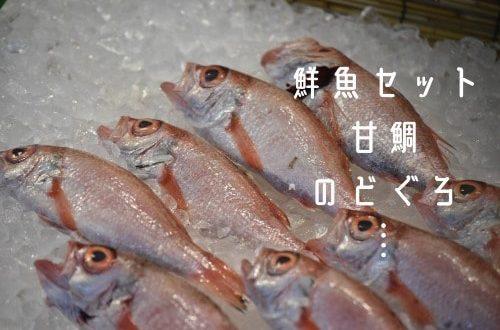鮮魚の写真と商品例示